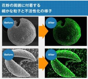 花粉抗体スプレーの効果と口コミ